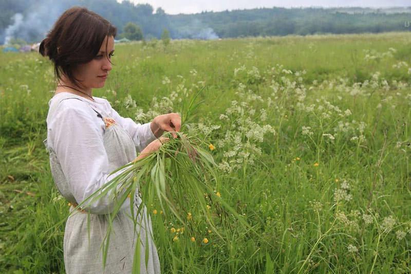 Девушка собирает декарственные растения