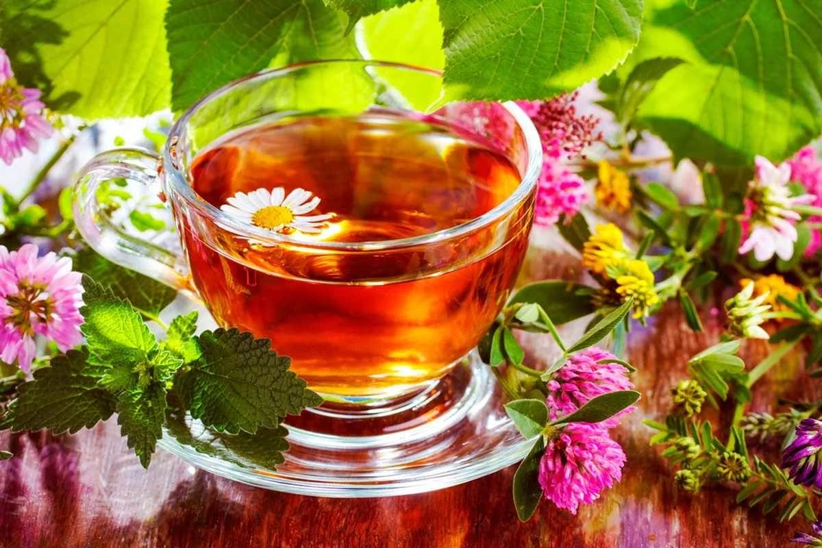 Монастырский чай от псориаза - отзывы, цена, где купить